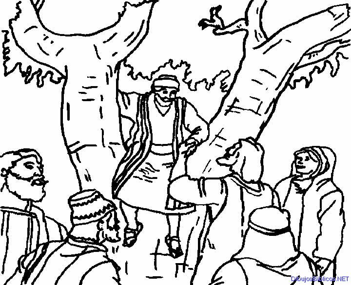 zaqueo coloring pages - photo #12